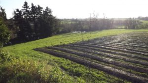 ferme lombricole en Vendée