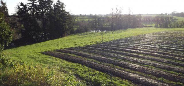 Lombriculteur en Vendée